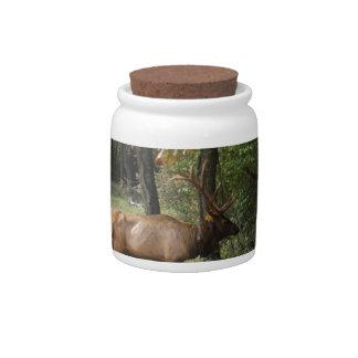 Big Bull Elk with Large Antler Candy Jar