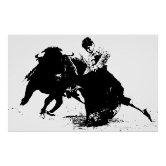 BIG Bull Fighter Poster