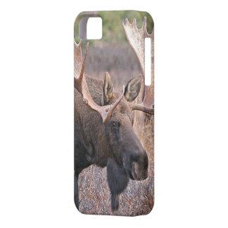 Big Bull Moose iPhone SE/5/5s Case