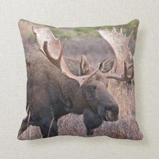 Big Bull Moose Pillow