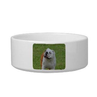 Big Bulldog Pet Bowl