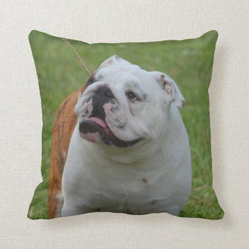 How Big Should Throw Pillows Be : Big Bulldog Throw Pillow Zazzle