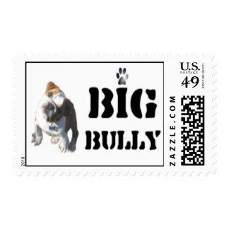 Big Bully Gear Post Card Postage