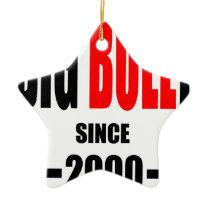BIG BULLY school since 2000 back learn homework te Ceramic Ornament