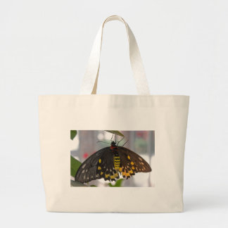 big butterfly canvas bag