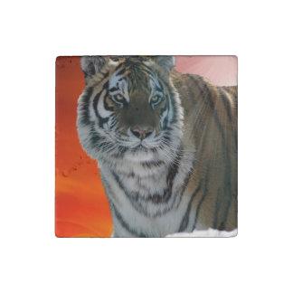 Big Cat Endangered Tiger Wildlife Photo Portrait 3 Stone Magnet