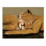 big cat nap postcard