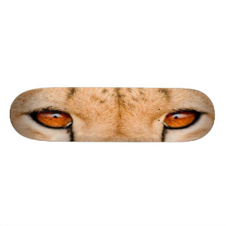 BIG CAT SKATEBOARD-1 Fastest Cat around!  Cheetah! Skateboard