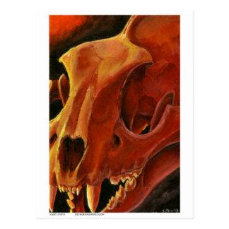 Big Cat Skull: Caracal Lynx study Postcard
