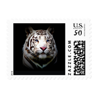 Big Cat Stamps