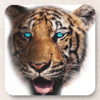 Big Cat Tiger Face Drink Coaster