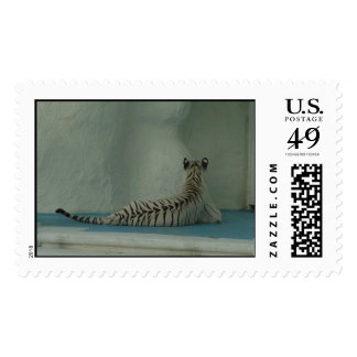 Big Cat with Big Vegas 'tude Postage Stamp