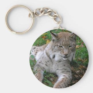 Big Cats - 11 Keychain