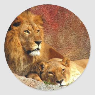Big Cats - 6 Classic Round Sticker