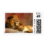 Big Cats - 6 Stamps