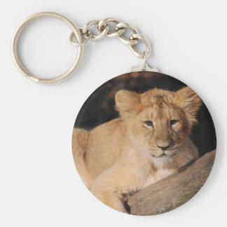 Big Cats - 8 Keychain