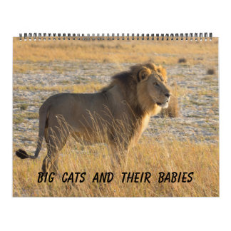 BIG CATS AND THEIR BABIES CALENDAR