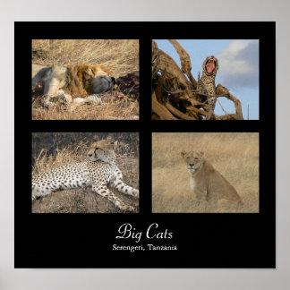 Big Cats - Serengeti, Tanzania Poster