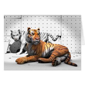 Big Cats - Tigers Card