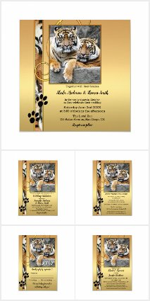 Big Cats Weddings