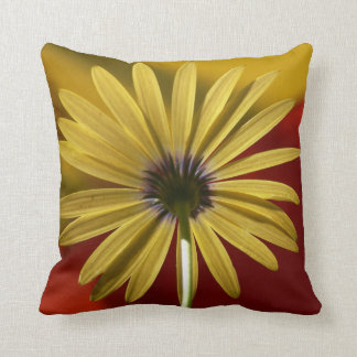 Big Colorful Daisy Flower  Pillow Photography