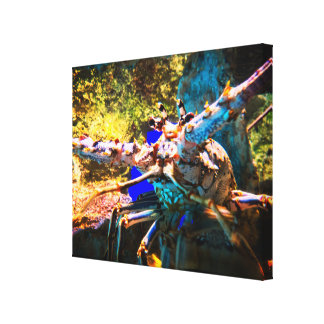 Big Colorful Lobster Canvas Print