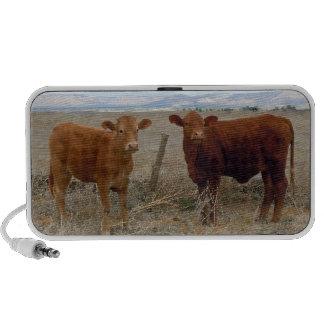 Big Cow Eyes - Red Cattle - Western Portable Speaker