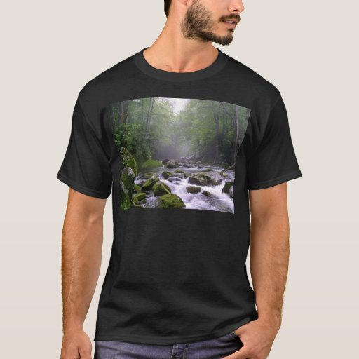 Big Creek in the Great Smoky Mountains T-Shirt