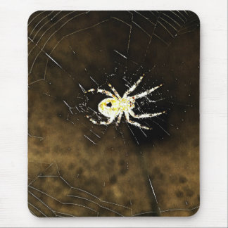 Big Creepy Spider on it's Web Mouse Pad