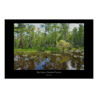 Big Cypress National Preserve -1 Poster