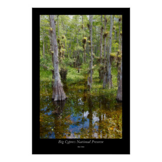 Big Cypress National Preserve - 2 Poster