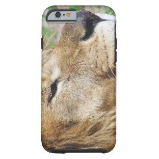 Big Daddy Lion Tough iPhone 6 Case