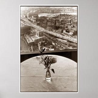 Big Dig Rose Poster