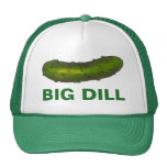 Big Dill (Deal) Green Pickles Crunchy Pickle Hat