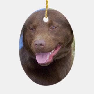 Big Dog Ceramic Ornament