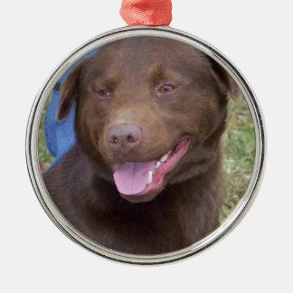 Big Dog Metal Ornament