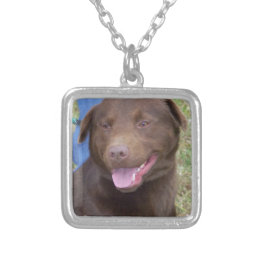 Big Dog Silver Plated Necklace