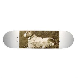 big dog skateboard