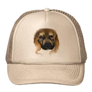Big Doggie Eyes Hat