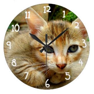 Big Eye Kitten Large Clock