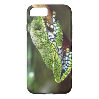 Big Eye Treefrog, Leptopelis vermiculatus, iPhone 7 Case