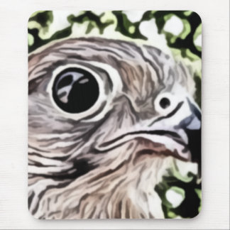 Big eyed bird painting mouse pad