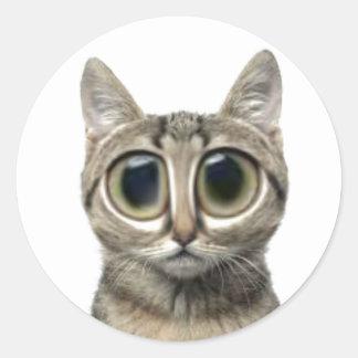 Big eyed kitty cat stickers