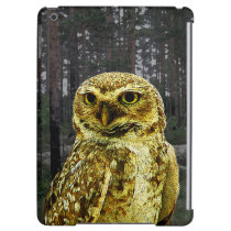 Big Eyed Owl in the Woods iPad Air Case