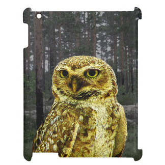 Big Eyed Owl in the Woods iPad Case