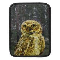 Big Eyed Owl in the Woods iPad Vertical Sleeve