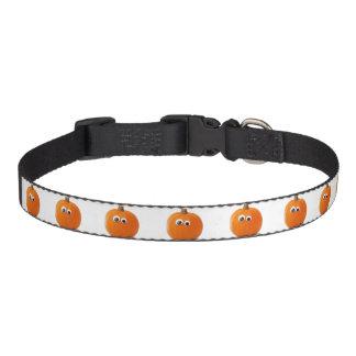 Big Eyed Pumpkin Pet Collar