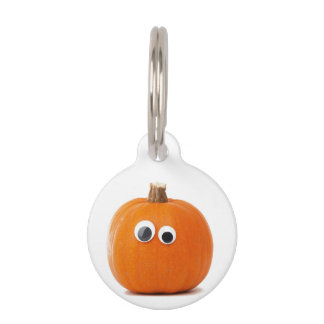Big Eyed Pumpkin Pet Tag