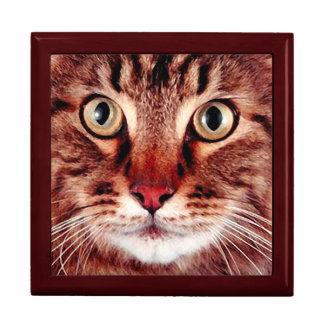 Big Eyes Cat Jewelry Box For Men