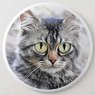 Big eyes pinback button